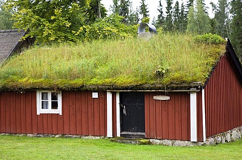 Typical swedish house with green roof, Smaland, South Sweden, Scandinavia, Europe