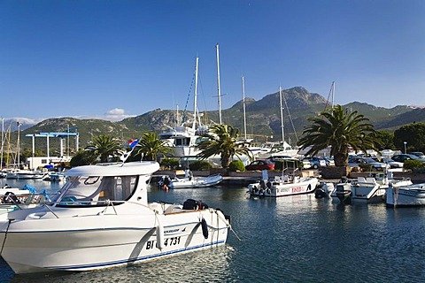 Calvi harbour, Corsica, mediterranean sea, France, Europe