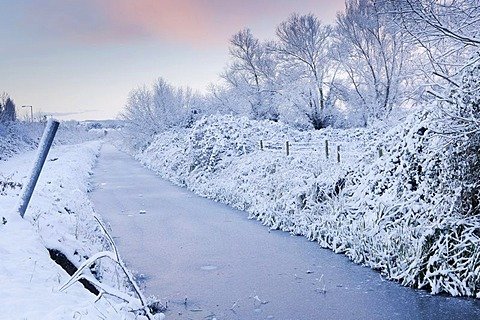 Winter scene of Wembdon Rhyne after heavy snow, early morning, Somerset, England, United Kingdom, Europe