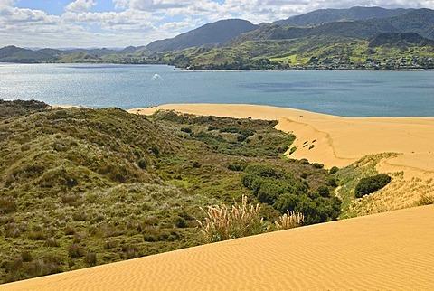 Dune landscape at Hokianga Harbour, Opononi, North Island, New Zealand