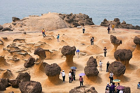 Rock formations in Yeliou National Park in Taiwan, China, Asia