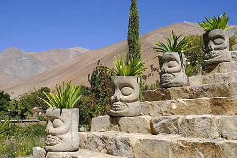 Stone heads, plants, garden, flower pots, stone stairs, Pisco Mistral Pisco distillery, national drink, Pisco Elqui, village, Vicuna, Valle d'Elqui, Elqui Valley, La Serena, Norte Chico, northern Chile, Chile, South America