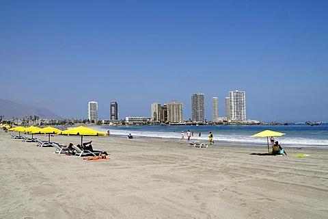 Deck chairs, sunshades, Playa Cavancha beach, coast, skyscrapers, Iquique, Norte Grande, northern Chile, Chile, South America
