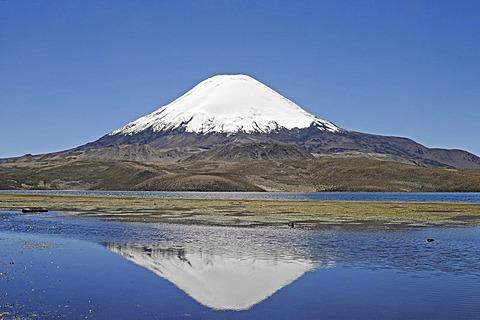 Parinacota Volcano, reflection in Lake Chungara, Lauca National Park, Altiplano, Norte Grande, Northern Chile, Chile, South America