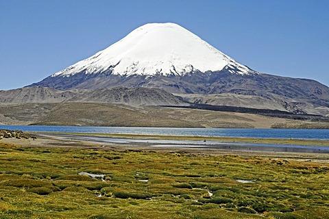 Parinacota Volcano, Lake Chungara, Lauca National Park, Altiplano, Norte Grande, Northern Chile, Chile, South America