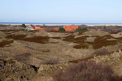 Dunes, Spiekeroog island, North Sea, Lower Saxony, Germany, Europe