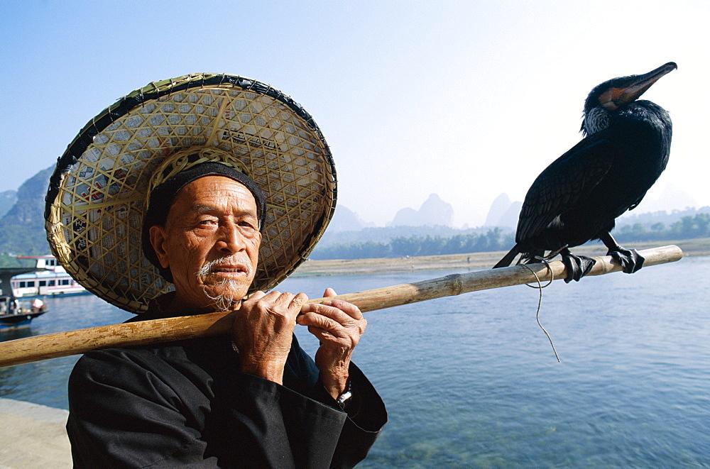 Cormorant Fisherman with bird on fishing pole, Li River, Guilin, Yangshou, Guangxi Province, China, Asia