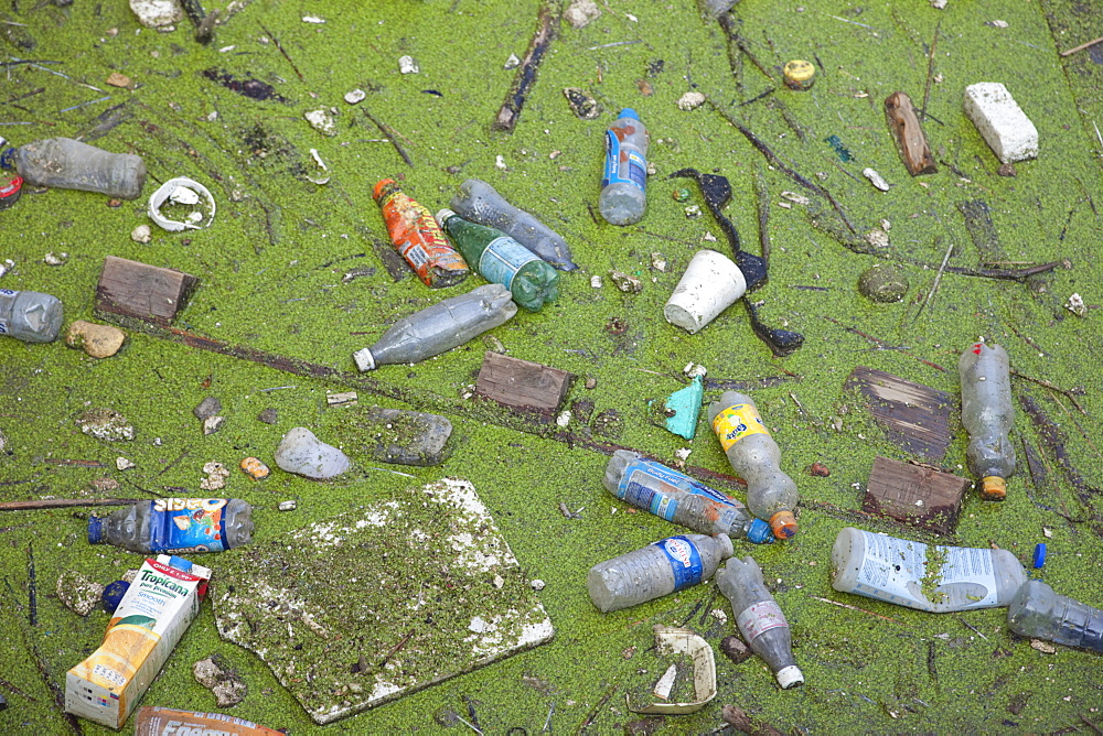 Pollution in the River Thames, London, England, United Kingdom, Europe - 834-1615