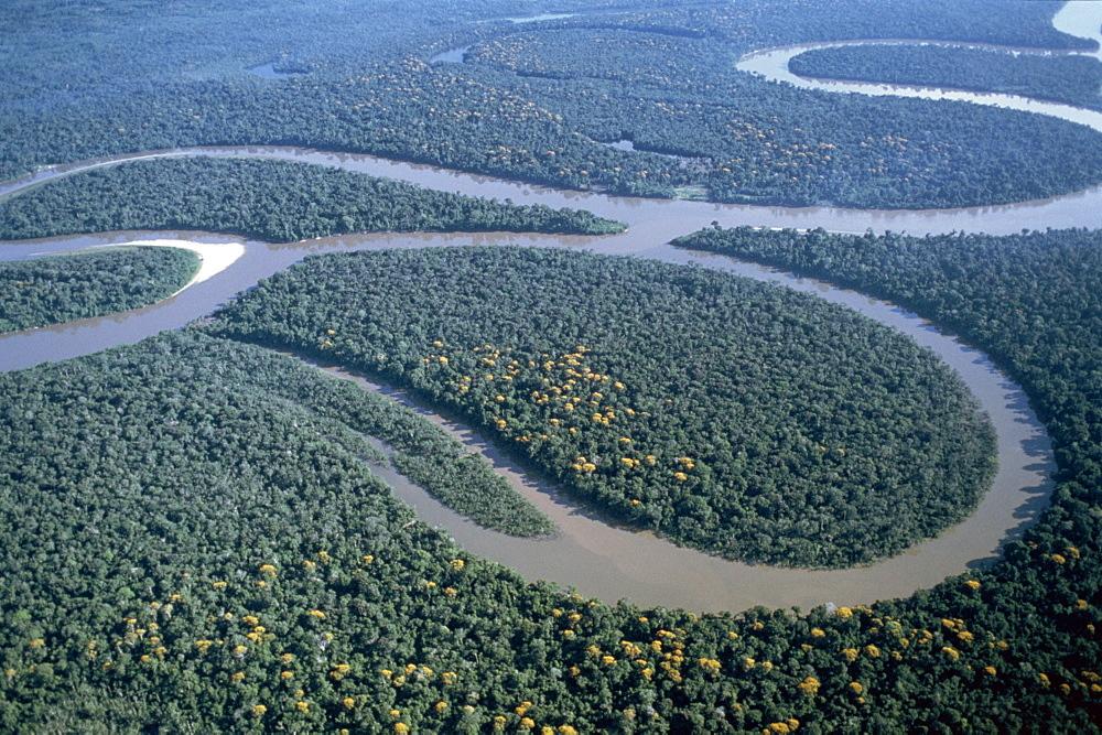Aerial view of Amazon River, Amazon Jungle, Brazil, South America - 834-3106