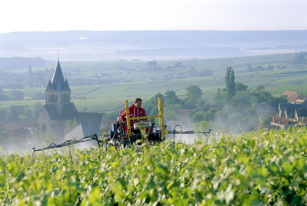 Vineyard spraying near Reims, Champagne, France, Europe