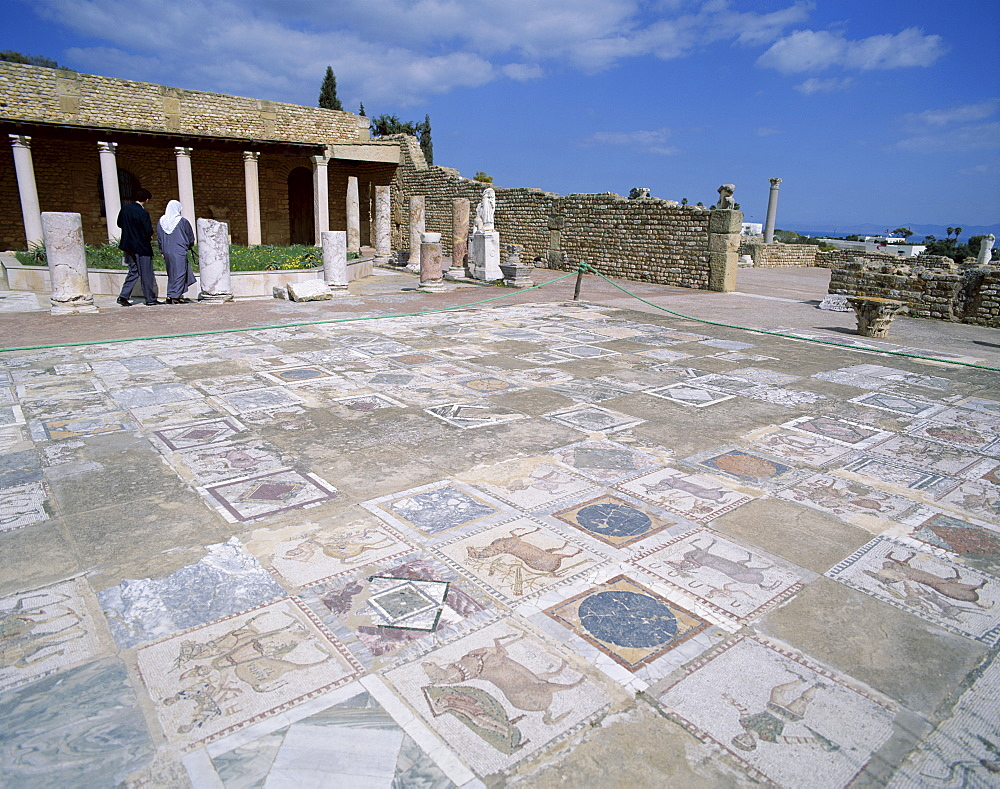 Mosaic floor, The Roman Villa, Carthage, UNESCO World Heritage Site, Tunis, Tunisia, North Africa, Africa