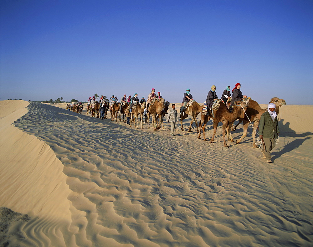 Tourists riding camels in sand dunes, Douz, Tunisia, North Africa, Africa