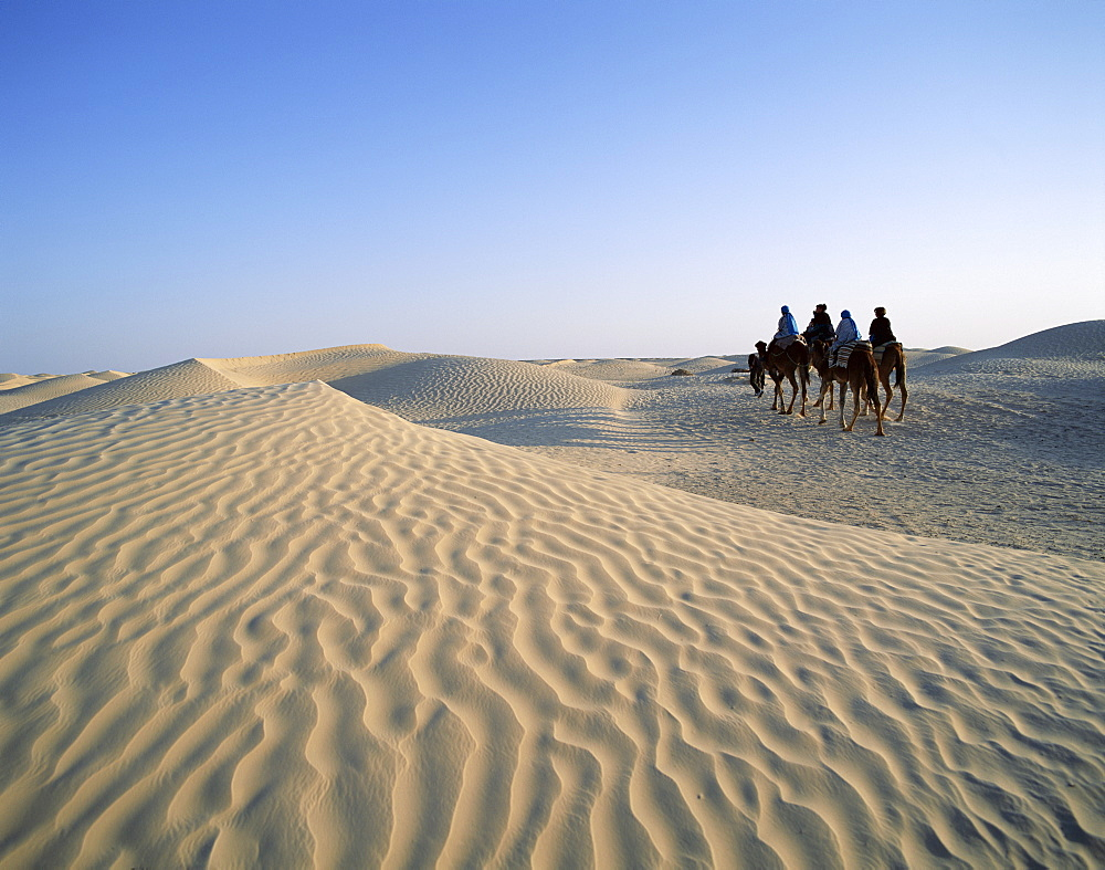 People riding camels in sand dunes, Douz, Tunisia, North Africa, Africa