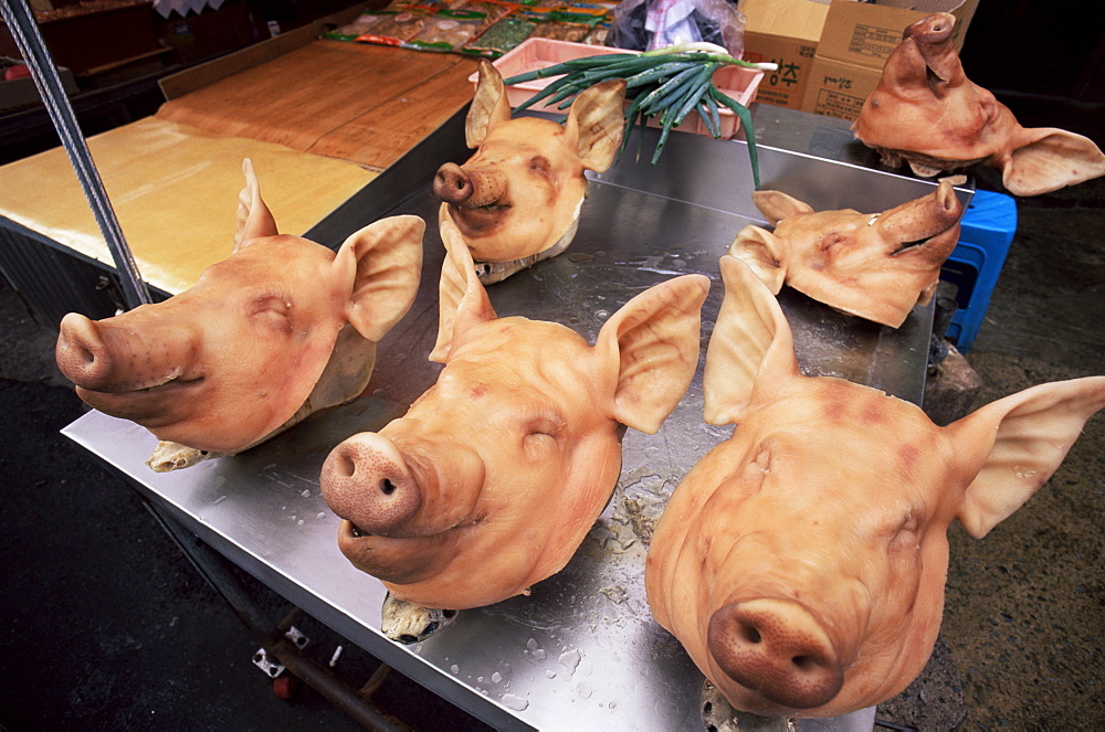 Pigs' heads on display, Jagalchi Market, Busan, South Korea, Asia