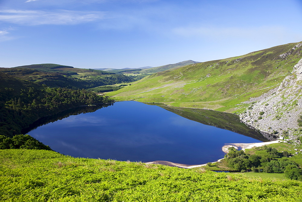 Lake Tay, Wicklow Mountains National Park, County Wicklow, Leinster, Republic of Ireland, Europe