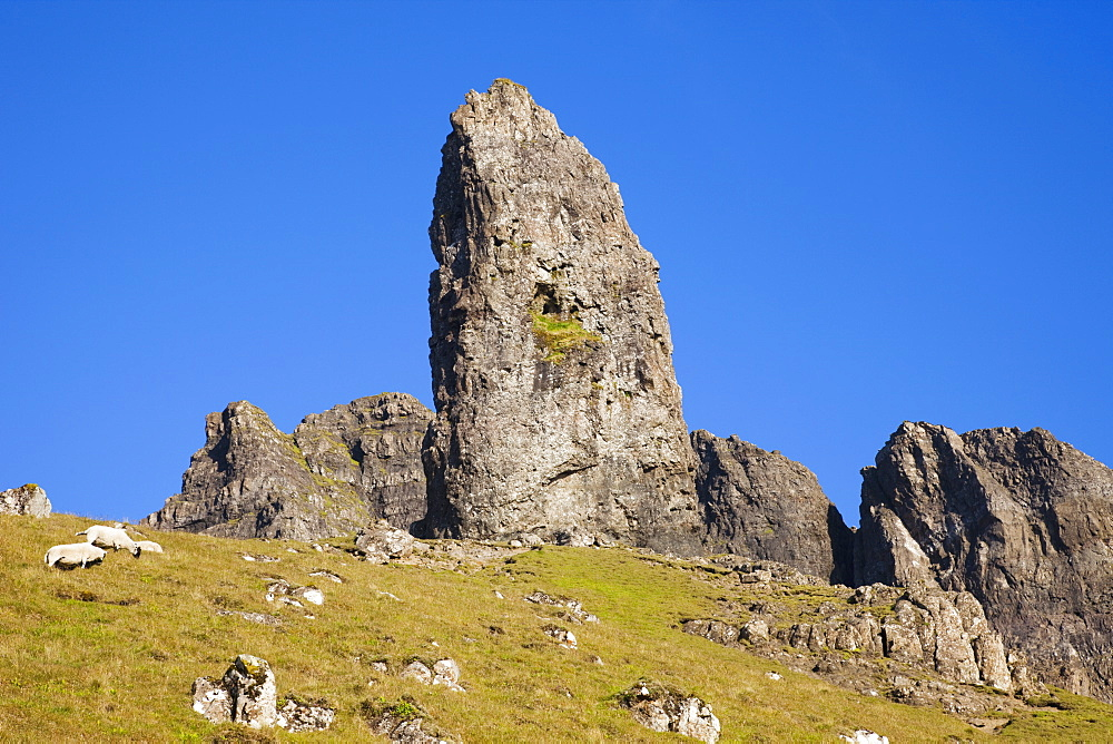 Old Man of Storr mountain, Trotternish Peninsula, Isle of Skye, Inner Hebrides, Scotland, United Kingdom, Europe - 834-7241