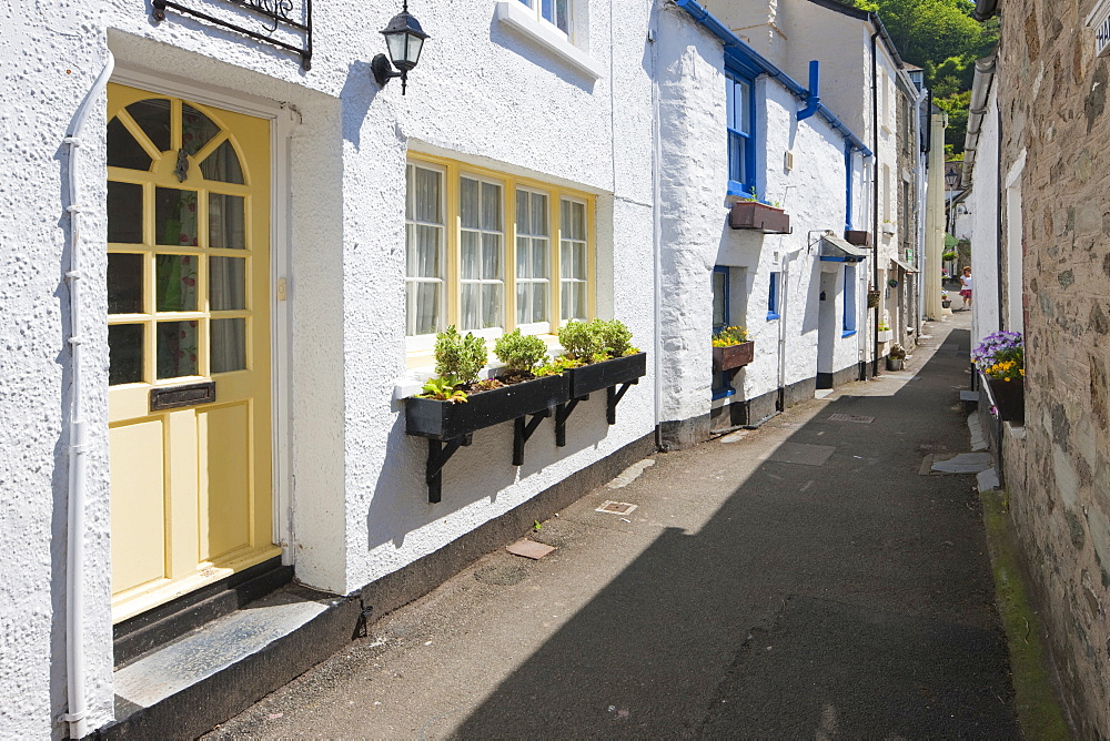 Traditional houses in a back street in Polperro, Cornwall, England, United Kingdom, Europe - 835-18