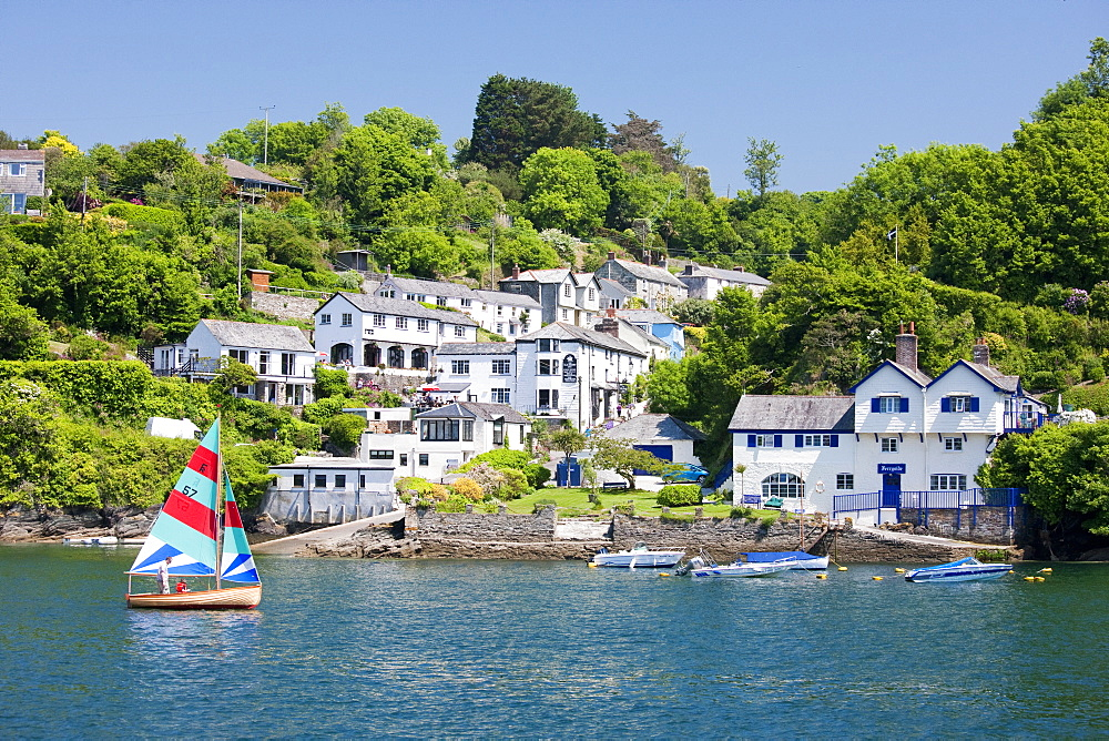 A dinghy sails past the village of Boddinick near Fowey, Cornwall, England, United Kingdom, Europe - 835-3