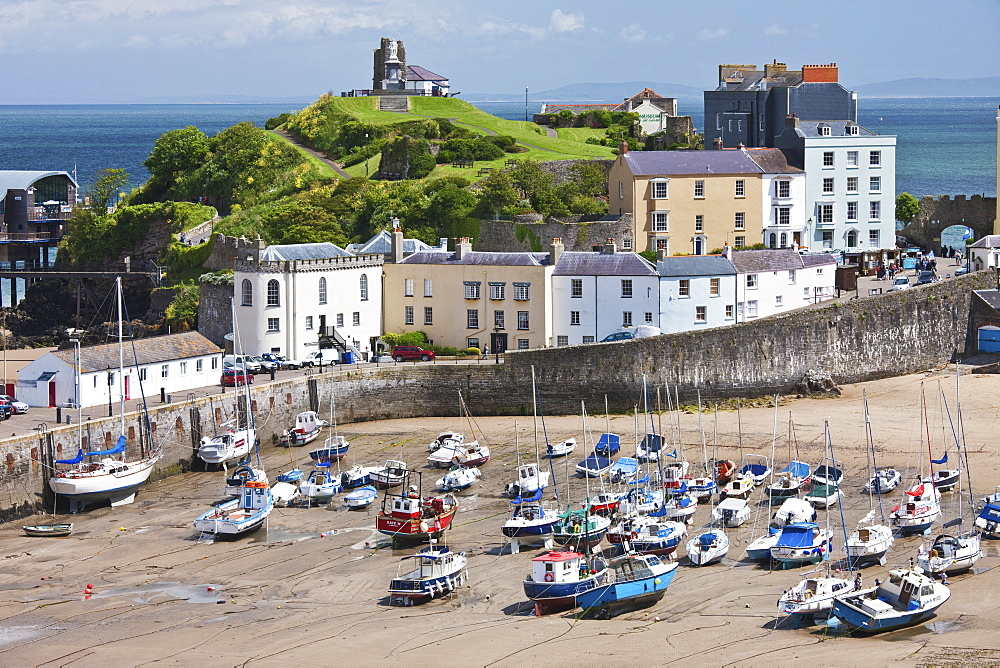 Tenby Harbour, Tenby, Pembrokeshire, Wales, United Kingdom, Europe - 835-77