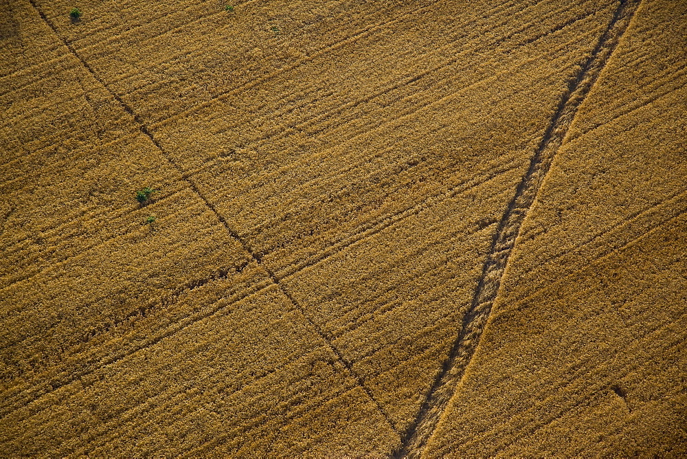 Aerial abstractive view of the agriculture fields of the northern Negev desert - 837-1075