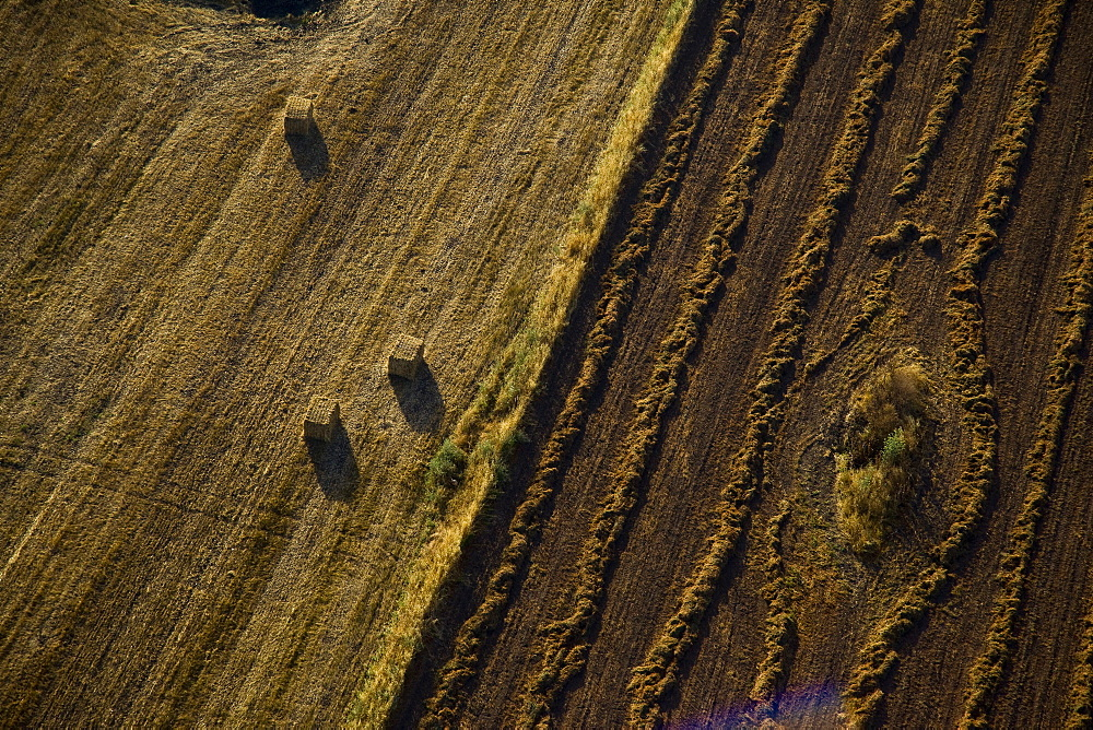 Aerial abstractive view of the agriculture fields of the northern Negev desert - 837-1078