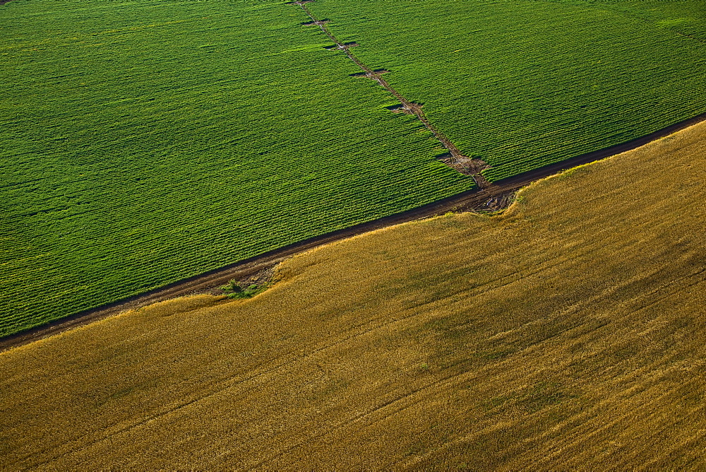 Aerial abstractive view of the agriculture fields of the northern Negev desert - 837-1079