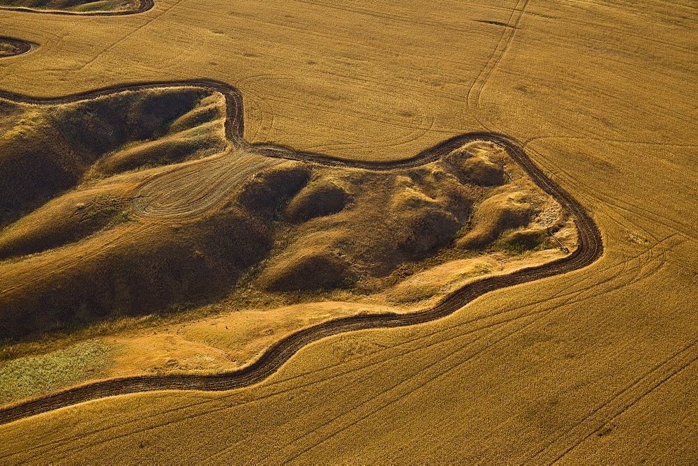 The agriculture fields of the Negev desert - 837-1081