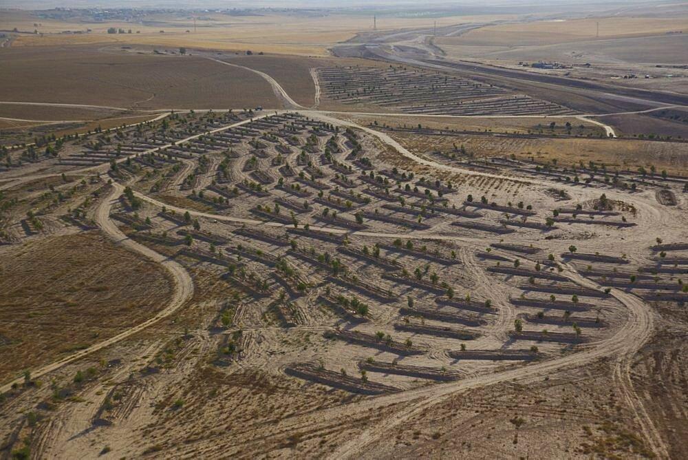 The landscape of the Negev desert - 837-1086