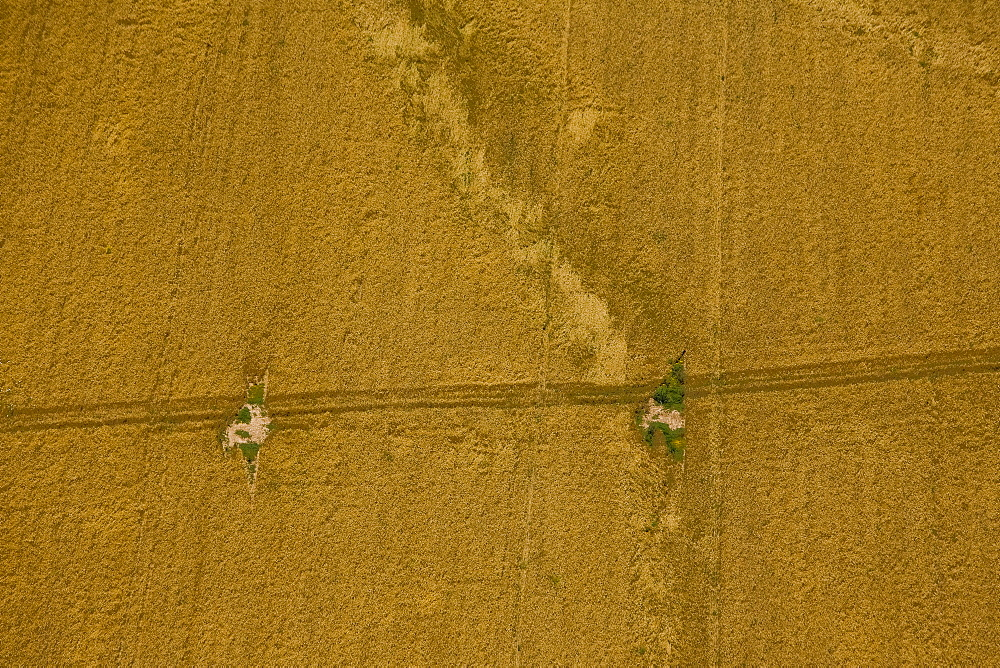 Aerial abstractive view of the agriculture fields of the northern Negev desert - 837-1096