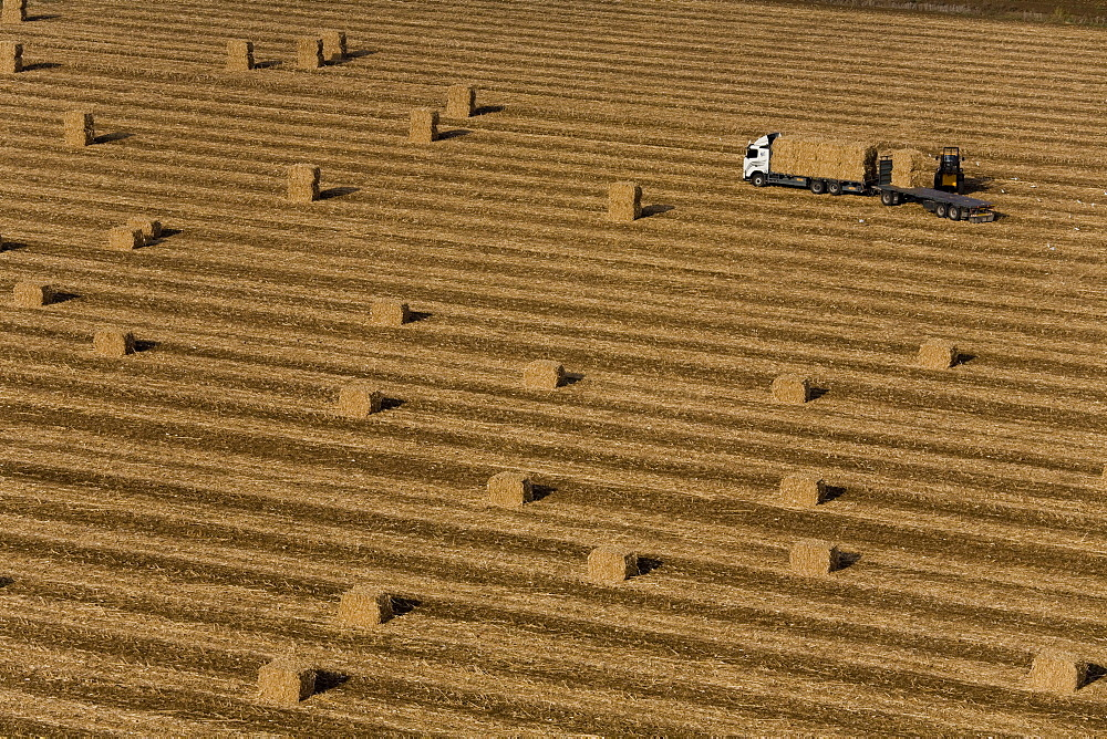 Aerial photograph of Hay stacks in a field in the costal plain, Israel