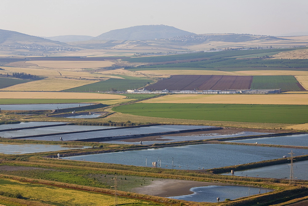 Aerial fishponds of the Jezreel valley, Israel