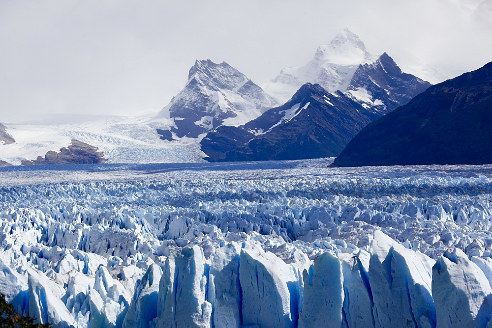 Photograph of a Glacier in Patagonia Argentina