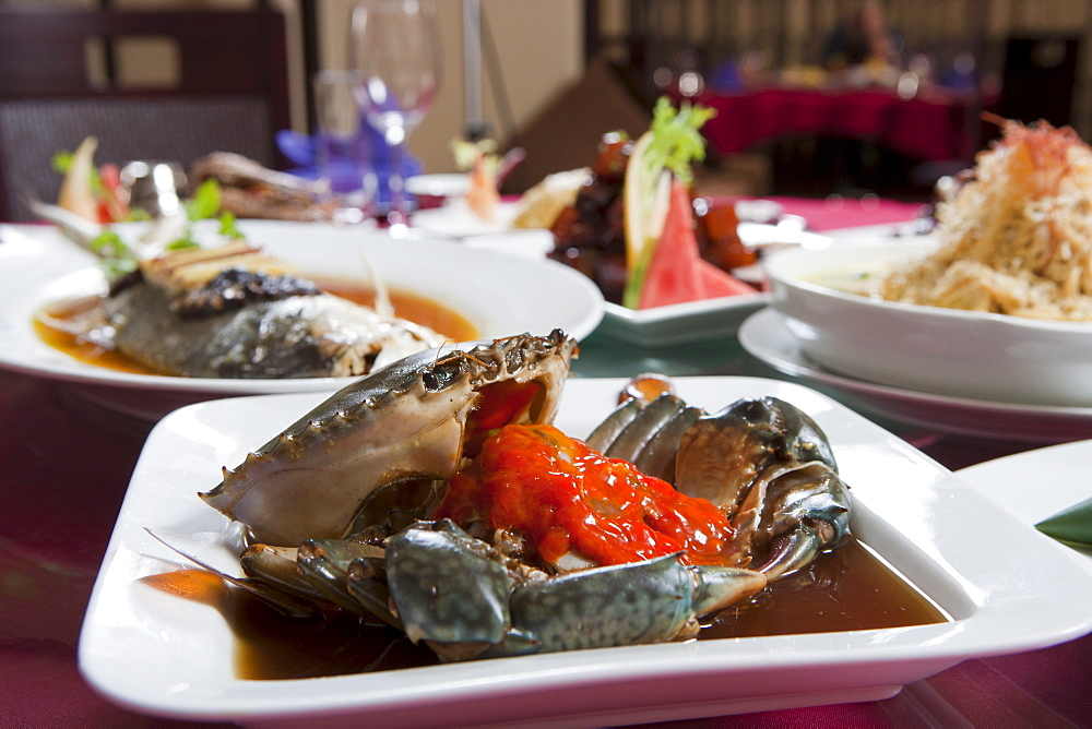 Shanghai style dishes served elegantly at a Chinese restaurant, Shanghai, China, Asia - 839-56