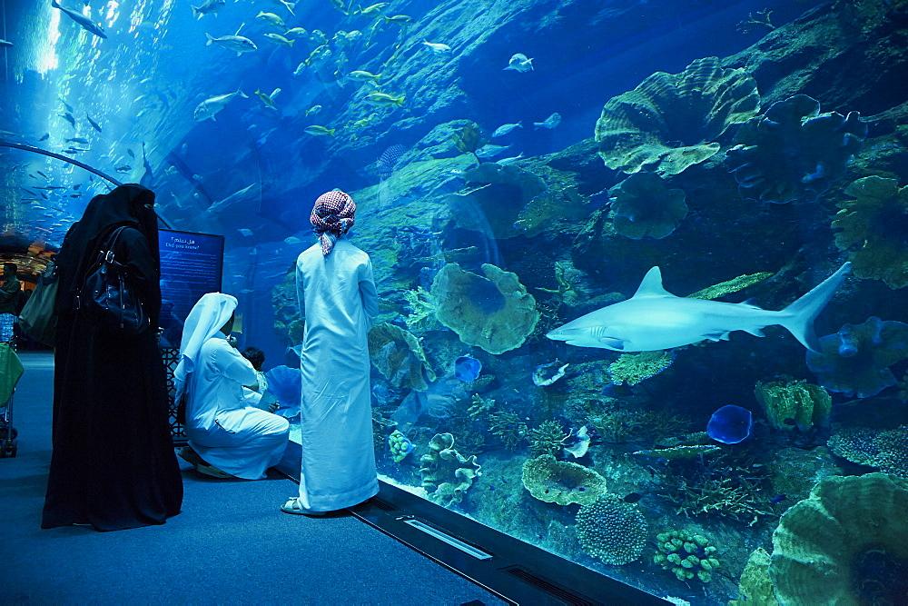 Aquarium, Mall of the Emirates Commercial Center, Dubai, United Arab Emirates, Middle East