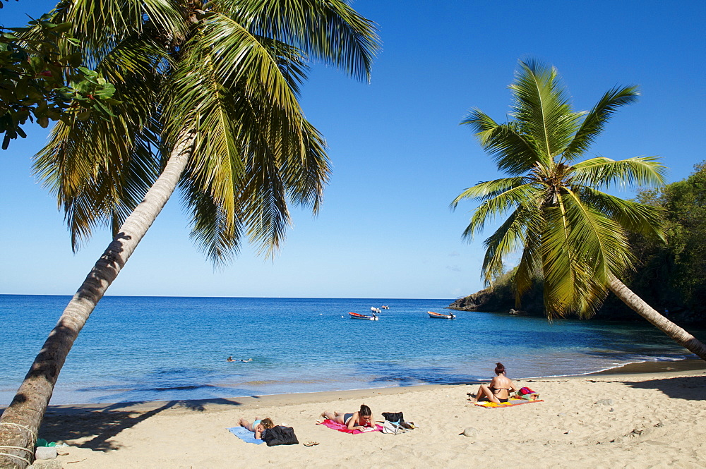 Anse Dufour beach, Martinique, French West Indies, Caribbean, Central America