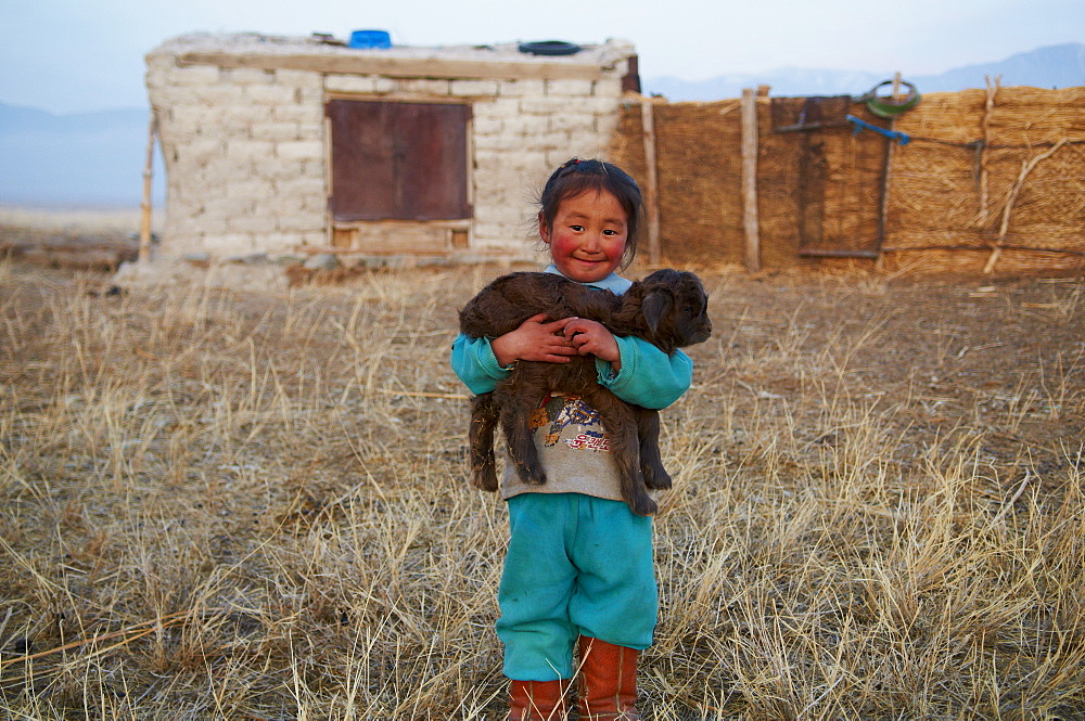 Young Mongolian nomad boy with his goat, Province of Khovd, Mongolia, Central Asia, Asia - 841-254
