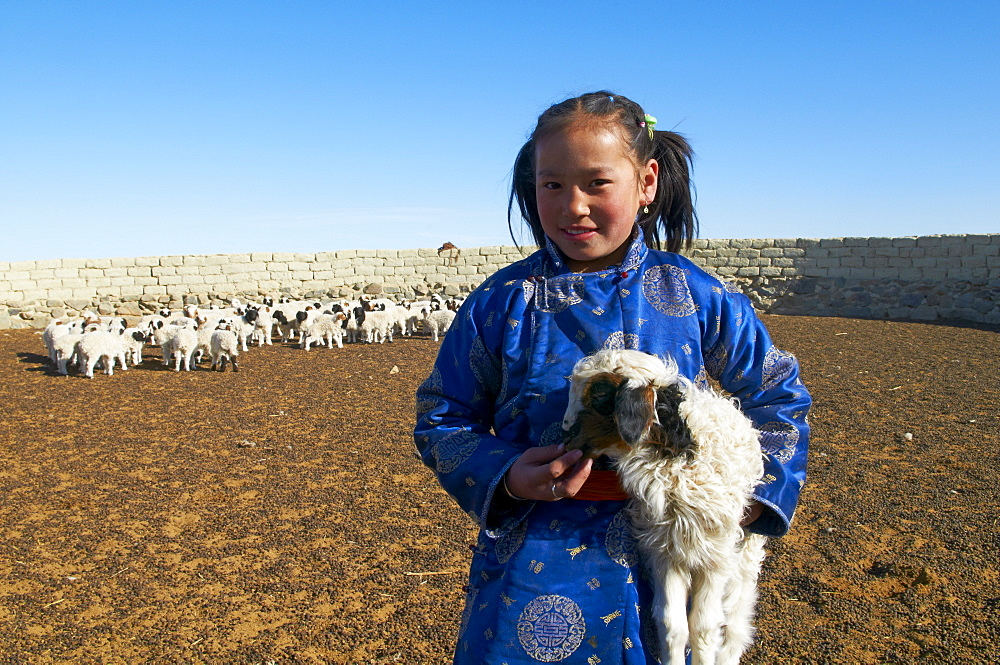 Young Mongolian girl in traditional costume (deel) with her sheep, Province of Khovd, Mongolia, Central Asia, Asia