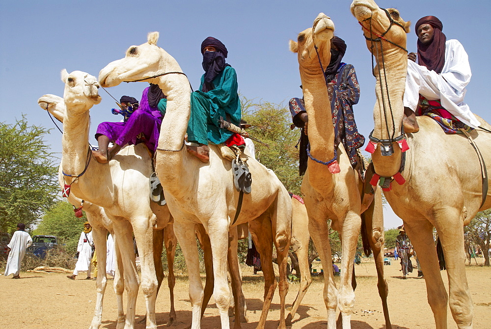 Gerewol, general reunion of West Africa for the Wadabee Peuls (Bororo peul), Niger, West Africa, Africa