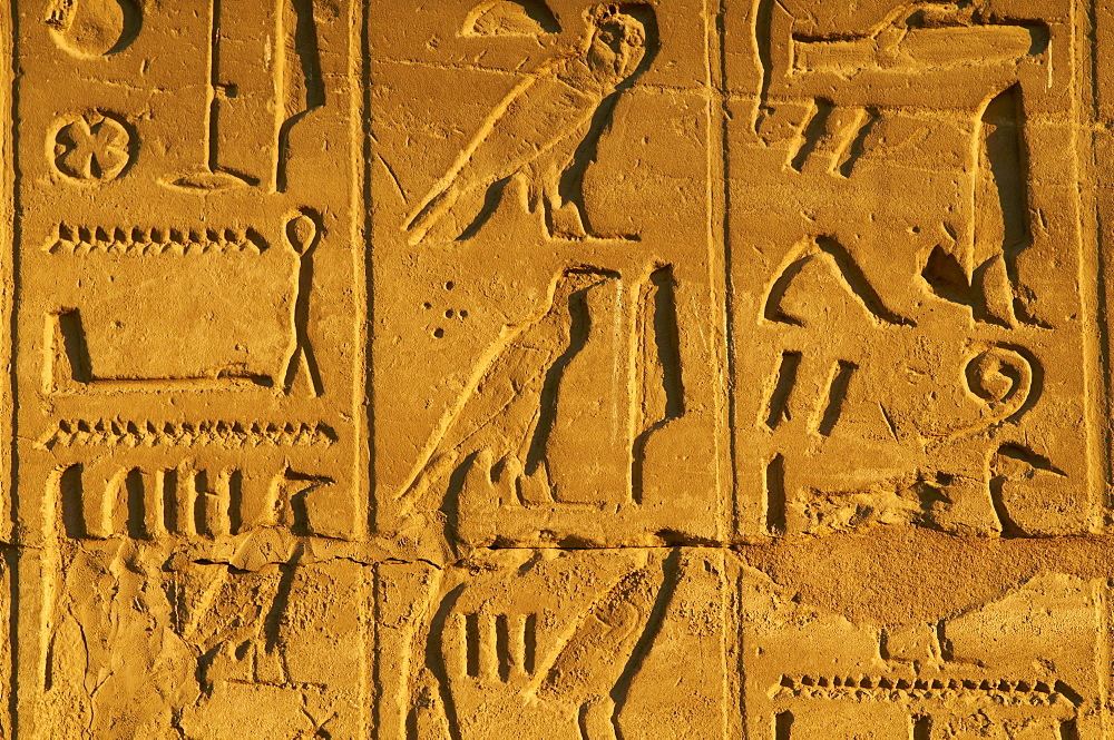 Bas relief, Temple of Luxor, Thebes, UNESCO World Heritage Site, Egypt, North Africa, Africa