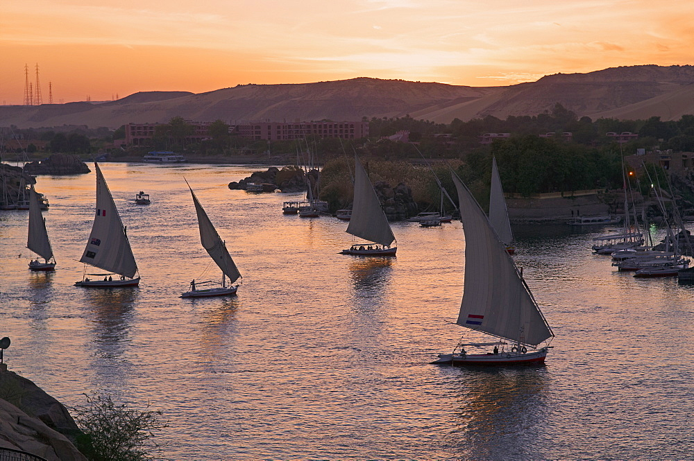 Feluccas on the River Nile, Aswan, Egypt, North Africa, Africa