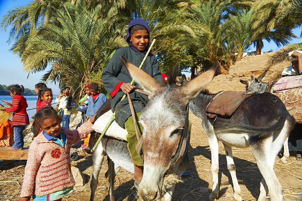Ramadi village, Nile Valley between Luxor and Aswan, Egypt, North Africa, Africa