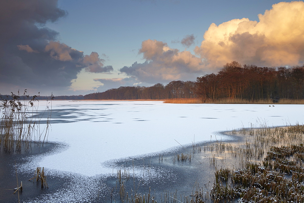 Freezing wintry conditions in the Norfolk Broads at Ormesby Little Broad, Filby, Norfolk, England, United Kingdom, Europe