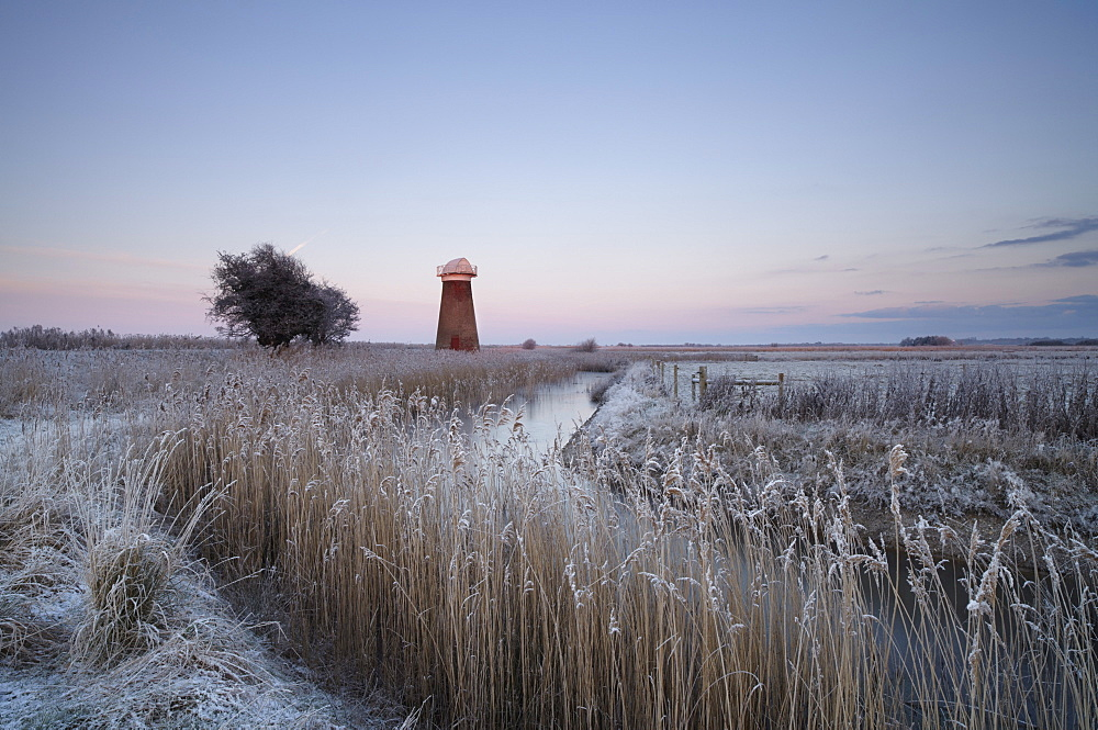 A frosty morning in the Norfolk Broads at West Somerton, Norfolk, England, United Kingdom, Europe