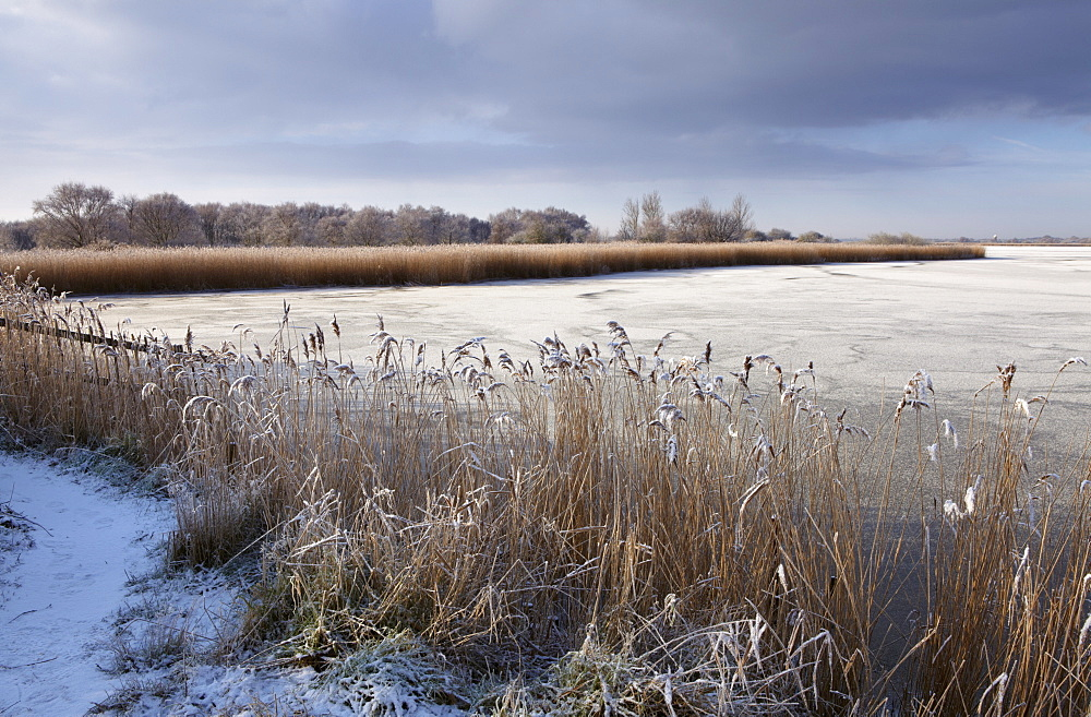 A cold winter day in the Norfolk Broads showing a frozen Horsey Mere, Horsey, Norfolk, England, United Kingdom, Europe