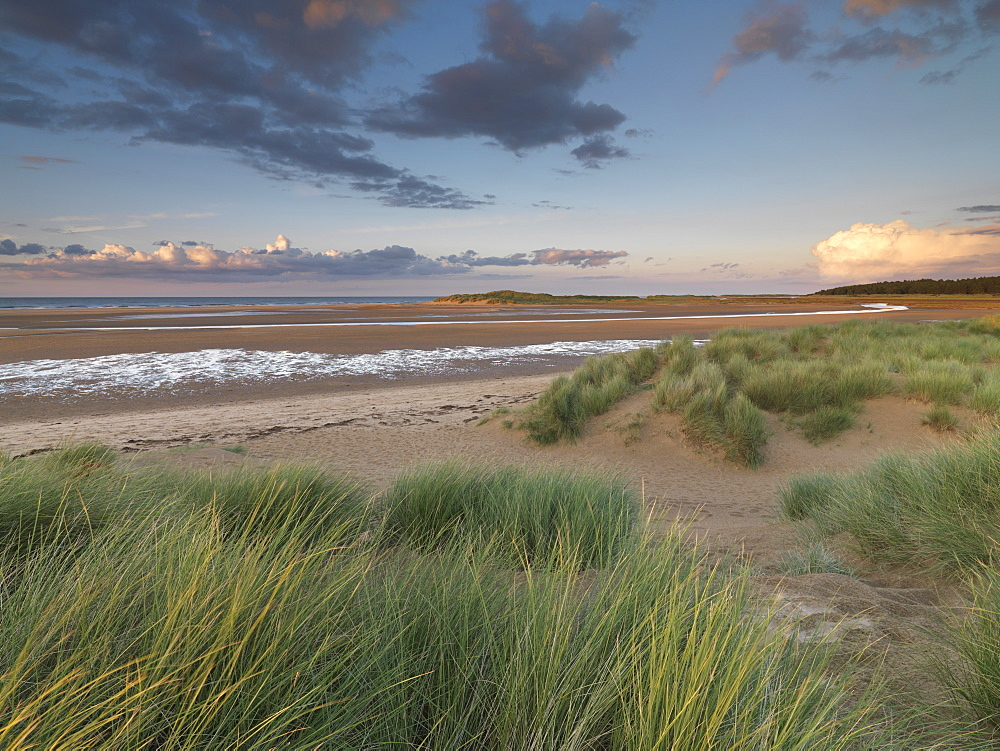 Beautiful light on a late summer evening at Holkham Bay, Norfolk, England, United Kingdom, Europe