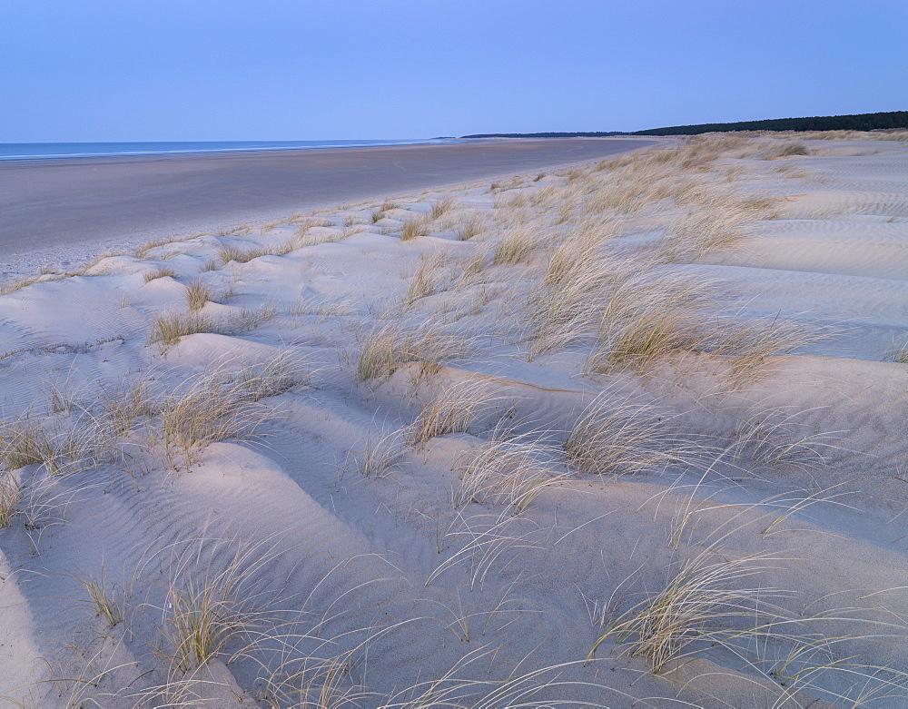 Twilight at the dunes and beach at Holkham Bay, Norfolk, England, United Kingdom, Europe