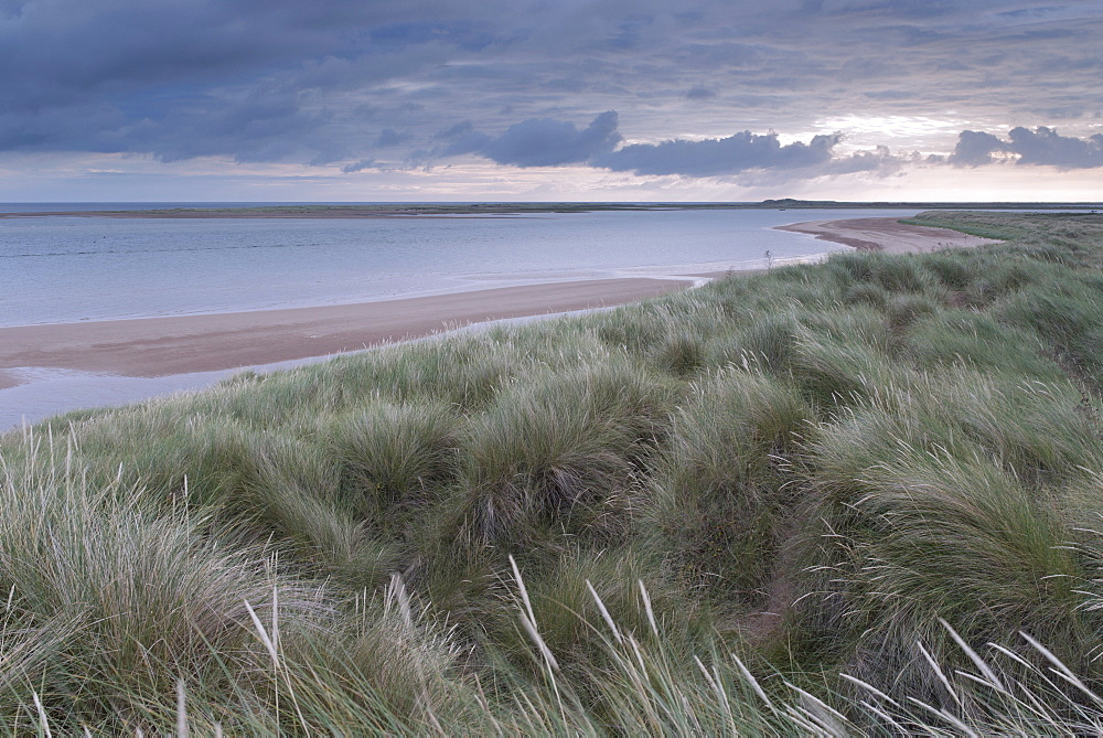 A view of the dunes and beach on a summer morning at Brancaster, Norfolk, England, United Kingdom, Europe