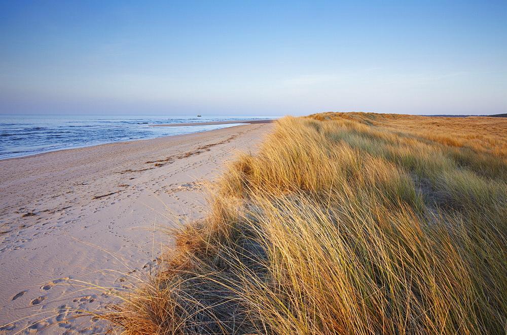 A sunny spring evening at Holkham Bay on the North Norfolk coast, Norfolk, England, United Kingdom, Europe