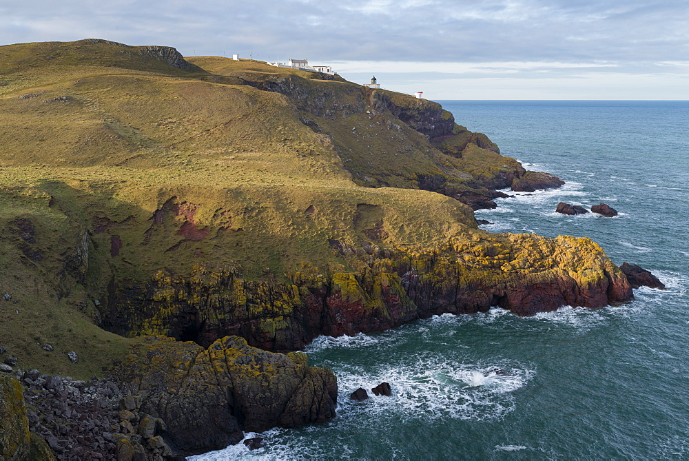 The coastline at St. Abb's Head Nature Reserve, Berwickshire, Scotland, United Kingdom, Europe - 842-503