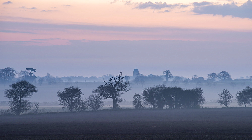 A view across fields on a misty morning towards the village of Martham, Norfolk, England, United Kingdom, Europe
